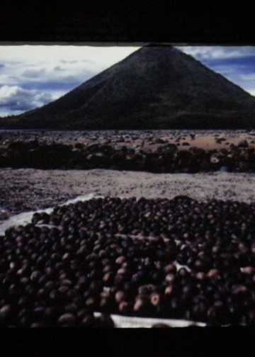 "Film ""Banda, The Dark Forgotten Trail"""