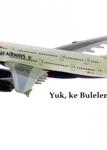Foto: miniatur pesawat/Bukalapak