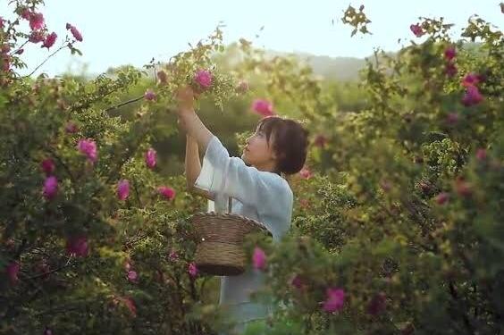 Li Zi Qi, Wanita Karir yang Memilih Tinggal di Desa