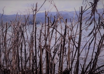 Ilustrasi foto Danau Batur || Foto oleh IK Eriadi Ariana