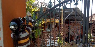Cerita Nasi Jinggo Ayam Kampung dari Kopabara untuk Warga Isoman di Buleleng