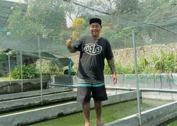 "Kelompok Petani Muda ""Boom Sakalaka"", Menjadikan Lele Sebagai Tuan Rumah di Bali"